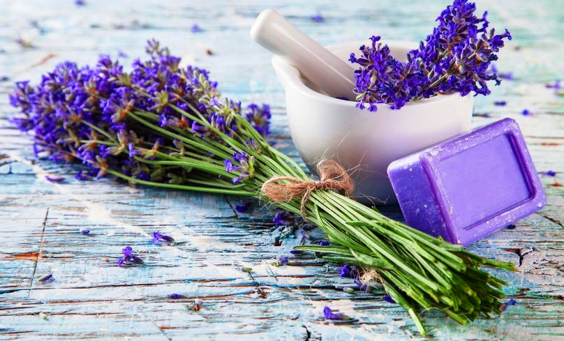 Homemade Lavender's Mad Calming Lotion