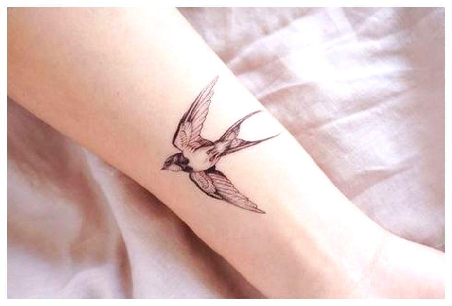 Delicate Watercolor Swallow Set